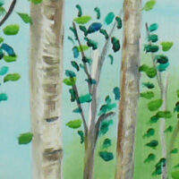 Willow trees Collection