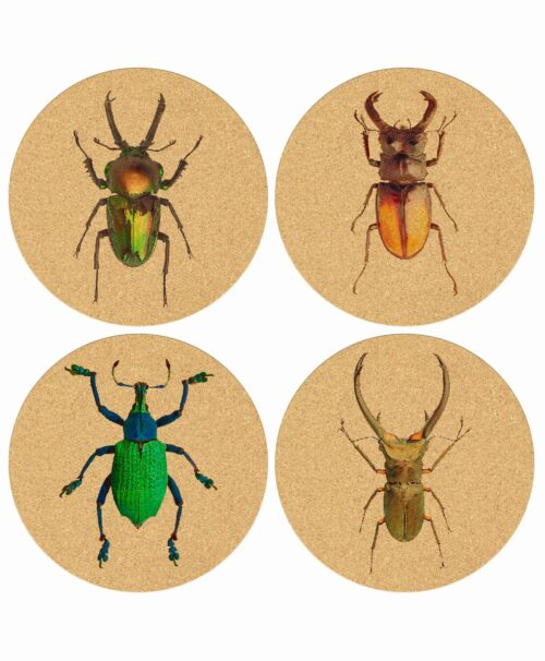 Cork Coasters Big Bugs