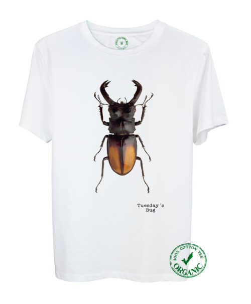 Tuesday Bug Organic T-shirt
