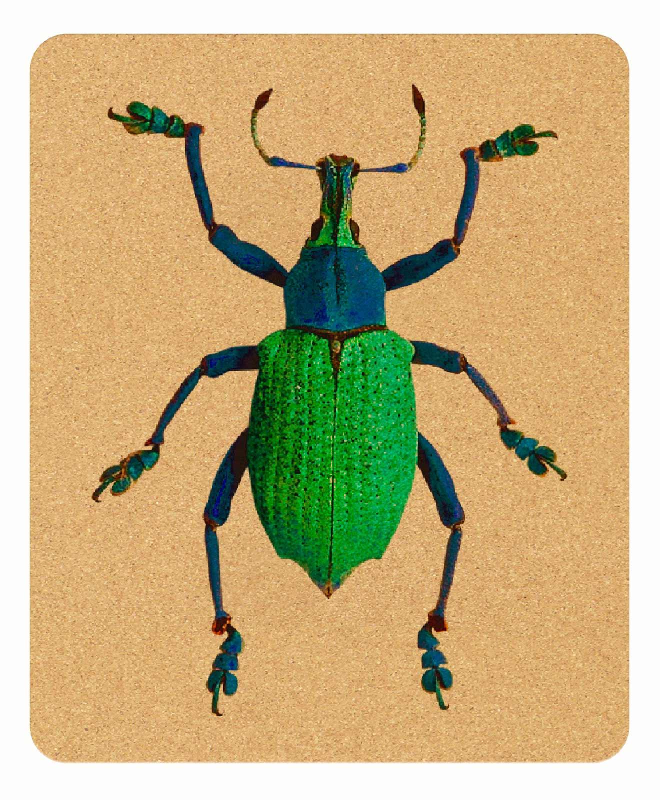 Friday Bug Cork Mousepad rectangular