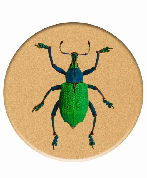 Big Bugs Cork Trivet Friday