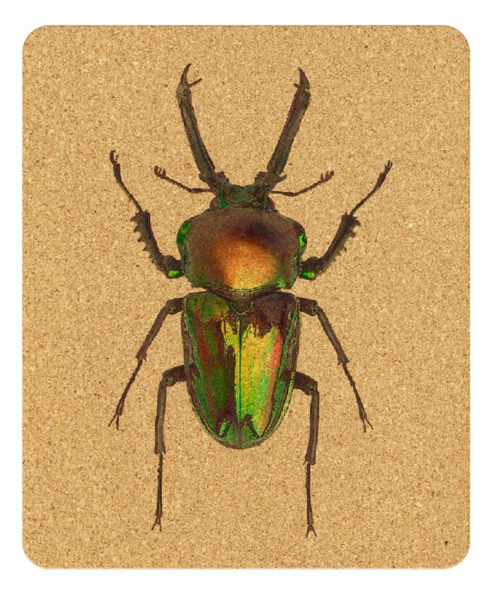 Mouse Pad Sunday Bug