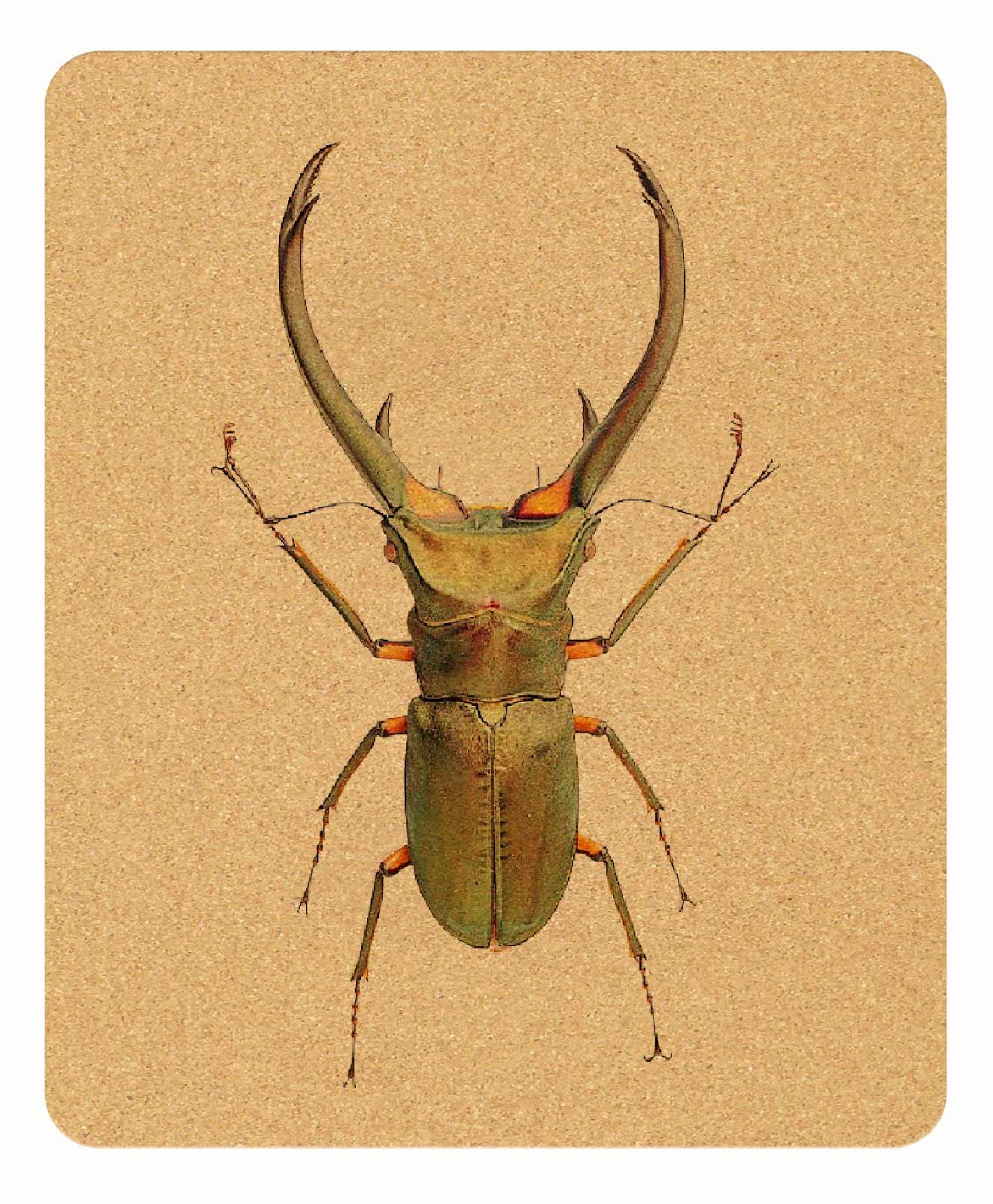 thursday Bug Cork Mousepad rectangular