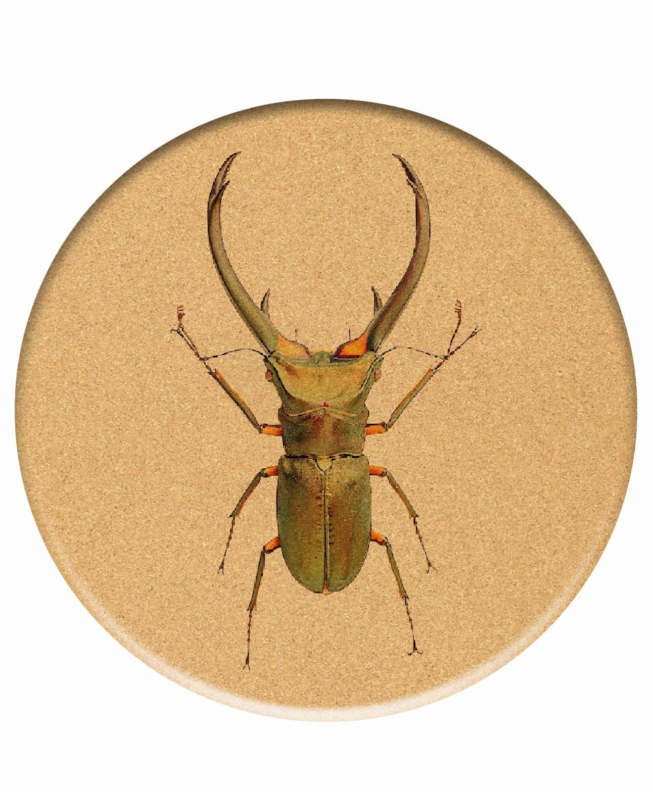 Big Bugs Cork Trivet thursday