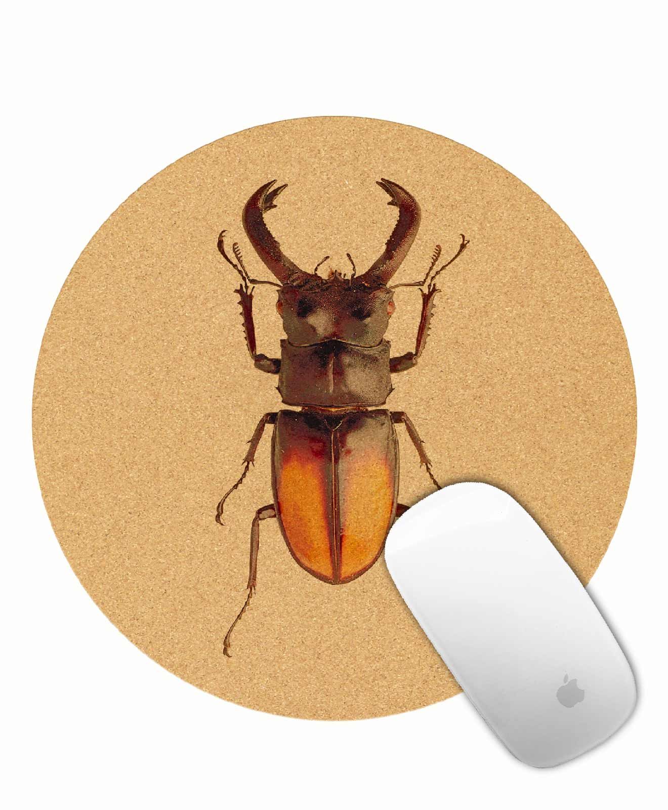 Mouse pad tuesday bug